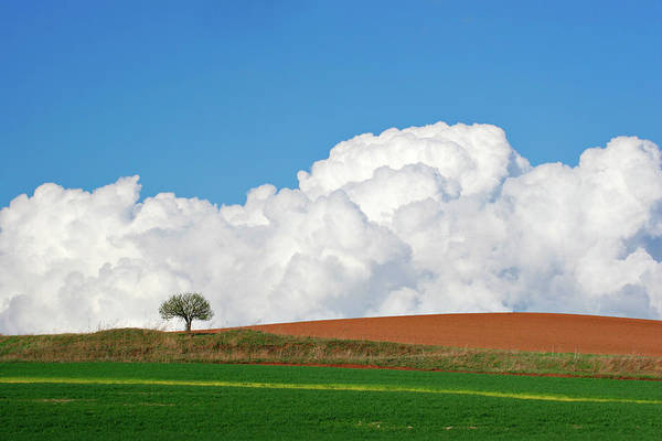 Storm Photograph - Colours Of Spring by Avtg
