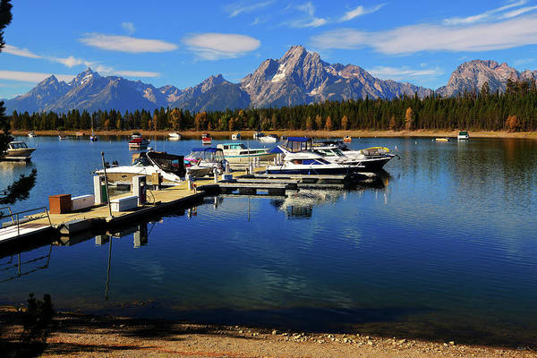 Photograph - Colter Bay Marina by Greg Norrell