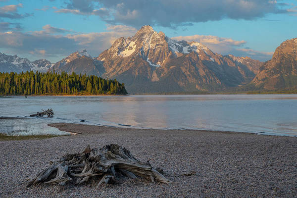 Photograph - Colter Bay Morning by Matthew Irvin
