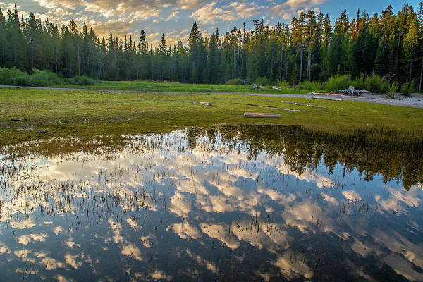Photograph - Colter Bay Reflections by Matthew Irvin