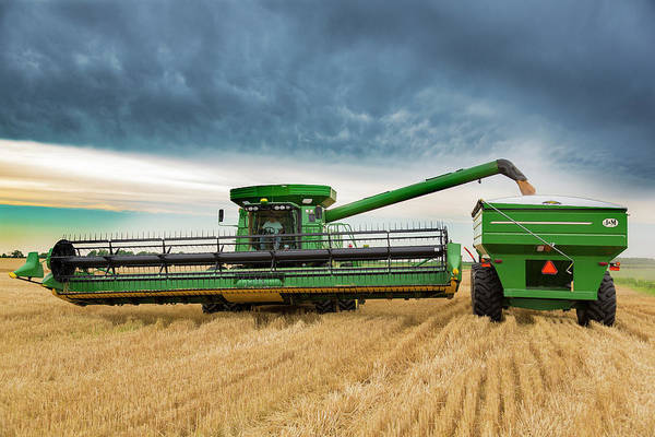 Wall Art - Photograph - Combine Harvesting Wheat Crop, Marion by Panoramic Images
