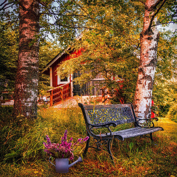 Wall Art - Photograph - Come Back Home On An Autumn Afternoon by Debra and Dave Vanderlaan