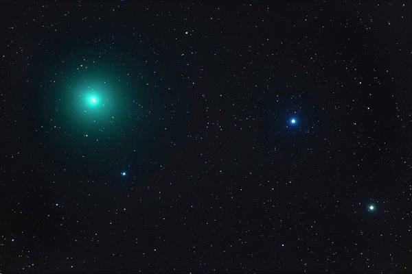 Wall Art - Photograph - Comet Wirtanen 46p At Perihelion by Alan Dyer