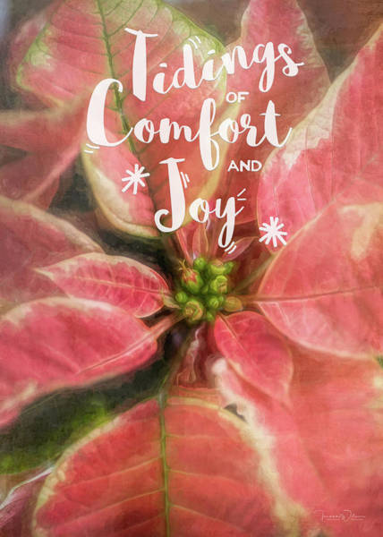 Photograph - Comfort And Joy Christmas Poinsettia By Tl Wilson Photography by Teresa Wilson