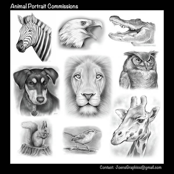 Commission Wall Art - Drawing - Commissioned Animal Portraits by Greg Joens