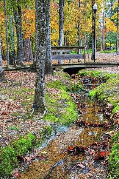 Photograph - Community Park Of Irmo South Carolina Creek by Lisa Wooten