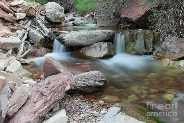 Wall Art - Photograph - Compelling Solace by Jeff Swan