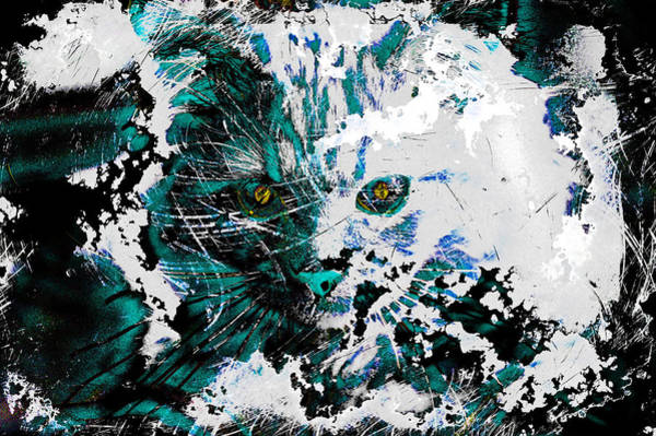 Digital Art - Complex Abstract Kitten by Don Northup