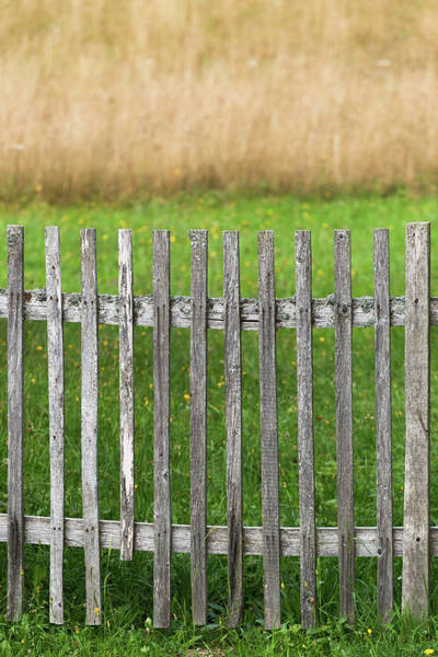 Photograph - Composition With Fence by Davor Zerjav