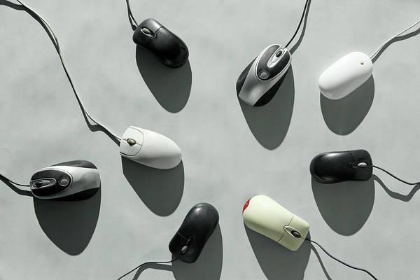 Mice Photograph - Computer Mice by Richard Newstead