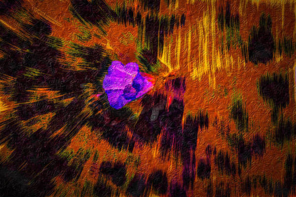 Digital Art - Confrey A #h9 by Leif Sohlman