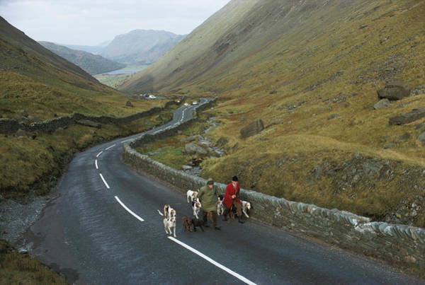 Wall Art - Photograph - Coniston Foxhounds by Epics
