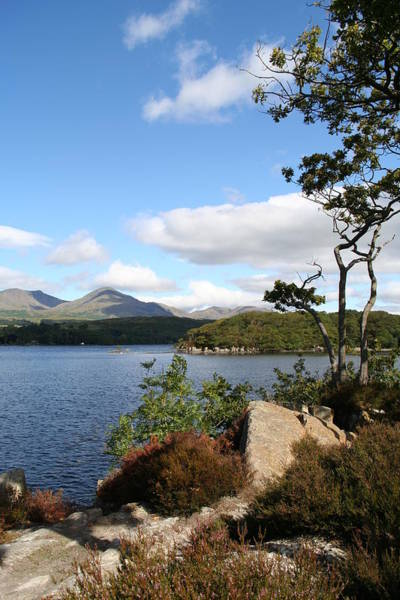 Photograph - Coniston Water by Elizabeth Lock