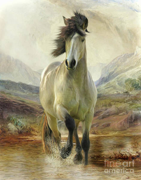 Eire Digital Art - Connemara Pony Of The Moors by Trudi Simmonds