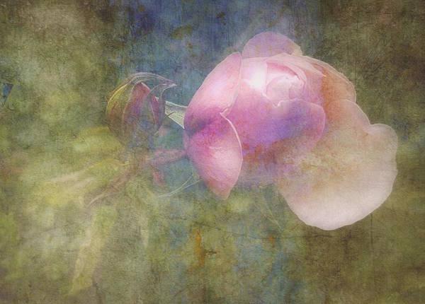 Wall Art - Digital Art - Constant Gardener  by Paul Lovering