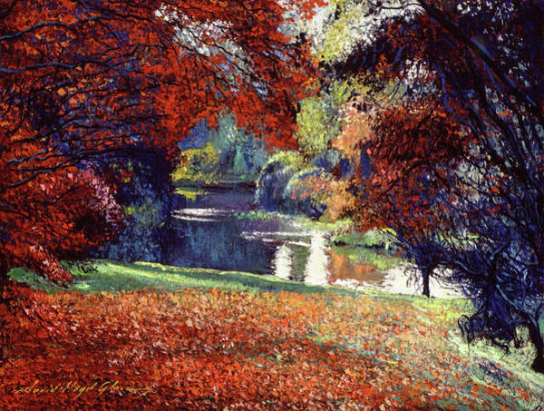 Painting -  Contemplation Lake by David Lloyd Glover