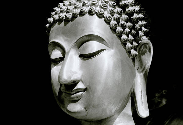 Photograph - Contemplation Of The Buddha by Shaun Higson
