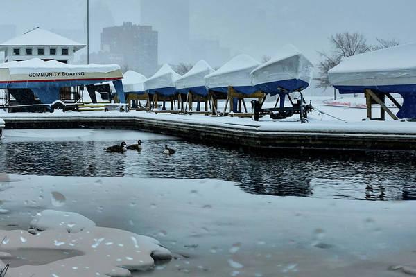 Photograph - Content As Snow by Christina Maiorano