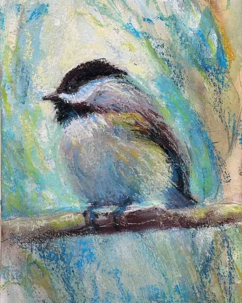 Pastel - Content Chickadee by Susan Jenkins