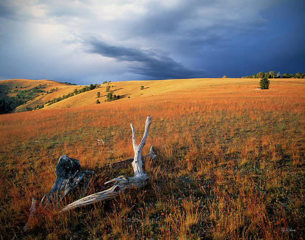 Divided Photograph - Continental Divide by Leland D Howard