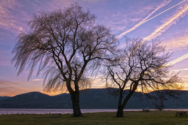 Wall Art - Photograph - Contrails And Tree Silhouettes At Dawn by Angelo Marcialis