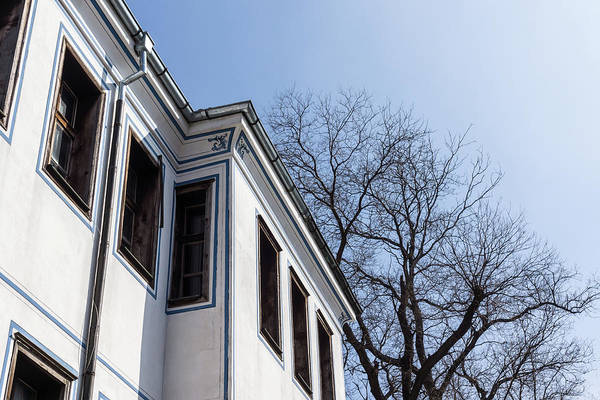 Photograph - Cool Blue Sunshine - Elegant Oriel Windows And Bare Branches In Old Town Plovdiv by Georgia Mizuleva
