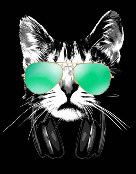 Wall Art - Digital Art - Cool Dj Cat by Filip Hellman