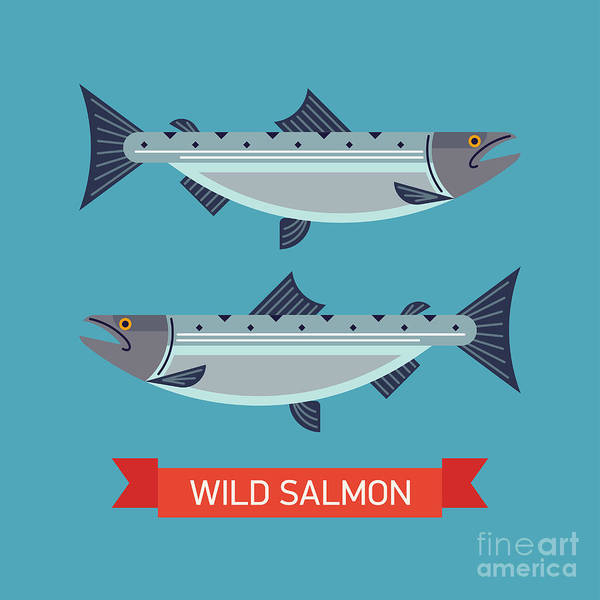 Friendly Wall Art - Digital Art - Cool Vector Wild Salmon Fish Icon In by Mascha Tace