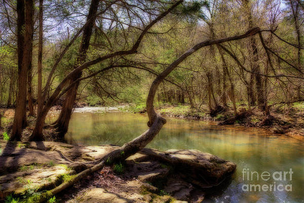 Wall Art - Photograph - Coonville Creek by Larry Braun