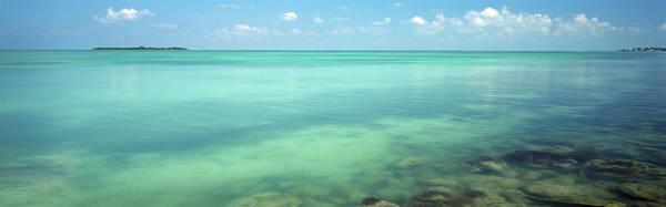 Bahia Honda Photograph - Coral Reefs In The Ocean, Bahia Honda by Panoramic Images