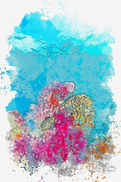 Painting - Corals, Ko Lipe, Thailand -  Watercolor By Adam Asar by Celestial Images