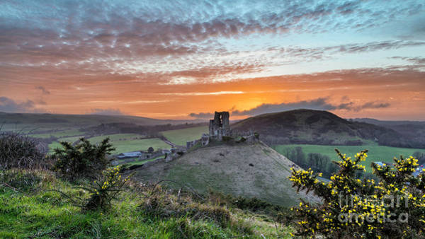 Photograph - Corfe Castle At Sunset, Wareham by Ollie Taylor