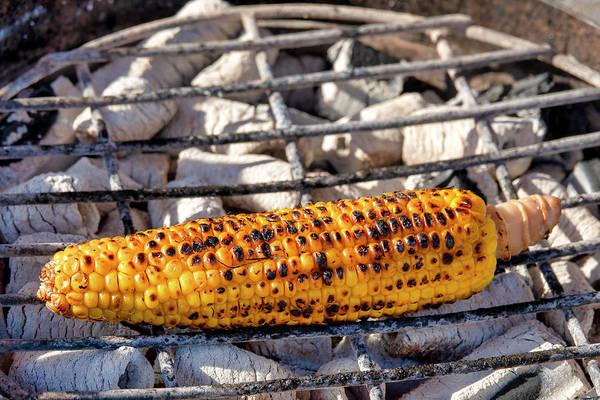 Photograph - Corn Of The Cob by Fabrizio Troiani