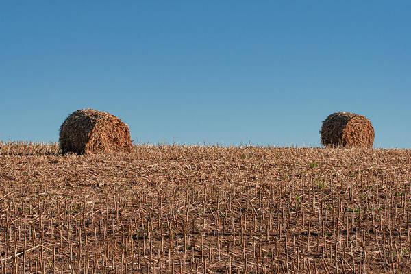 Stalk Photograph - Corn Stalk Bales by Todd Klassy