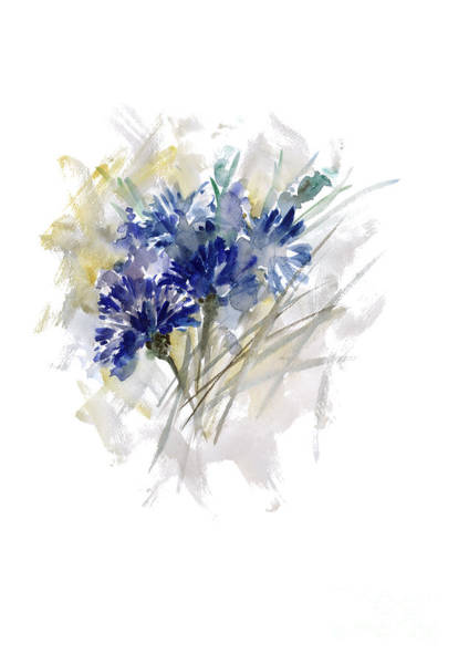 Wall Art - Painting - Cornflower Watercolor Poster Blue Grey Flowers Illustration by Joanna Szmerdt
