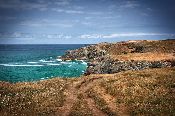 Photograph - Cornish  Landscape by David Resnikoff