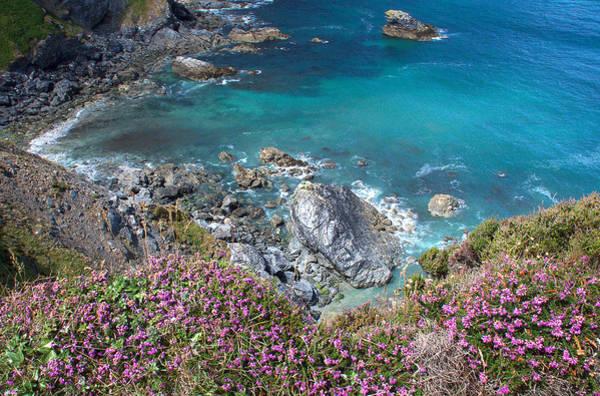 Photograph - Cornwall 3 by David Resnikoff