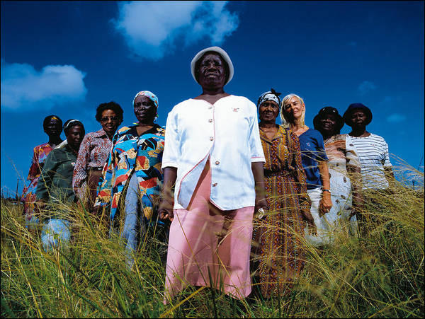 Photograph - Corporate Organization Helps by Brent Stirton