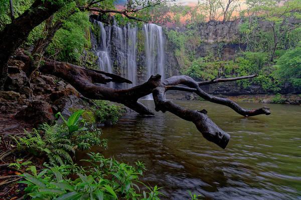Photograph - Costa Rican Waterfall by Jonathan Davison