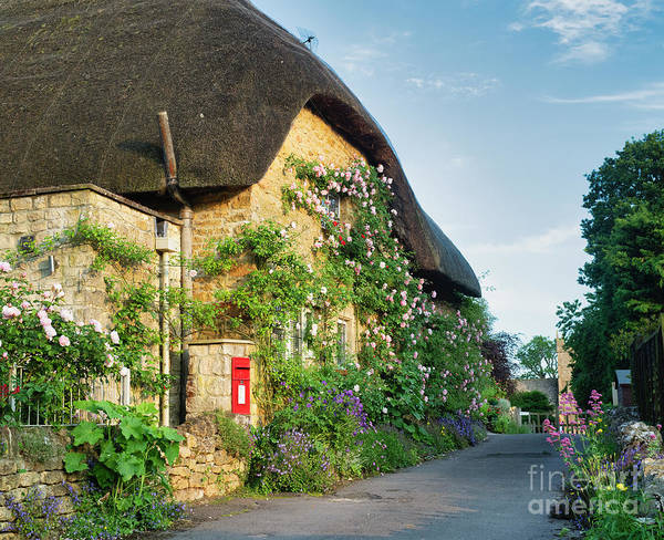 Photograph - Cotswold Stone Cottage In Ebrington by Tim Gainey