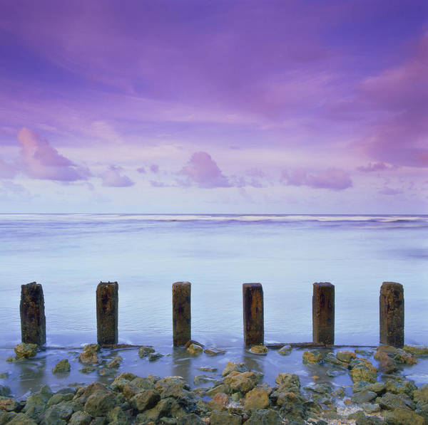 Photograph - Cotton Candy Skies Over The Sea by Trinidad Dreamscape