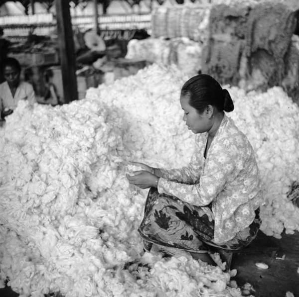 Indonesian Culture Photograph - Cotton Pile by Ebri