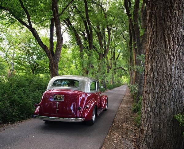 Photograph - Cottonwood Classic by Tom Gresham
