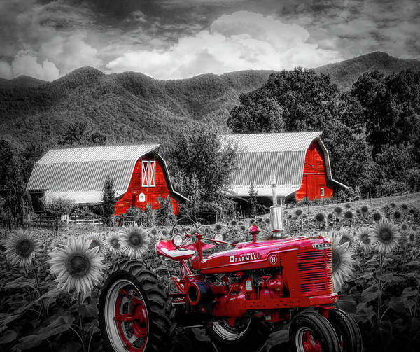 Wall Art - Photograph - Country Black, White, And Red by Debra and Dave Vanderlaan