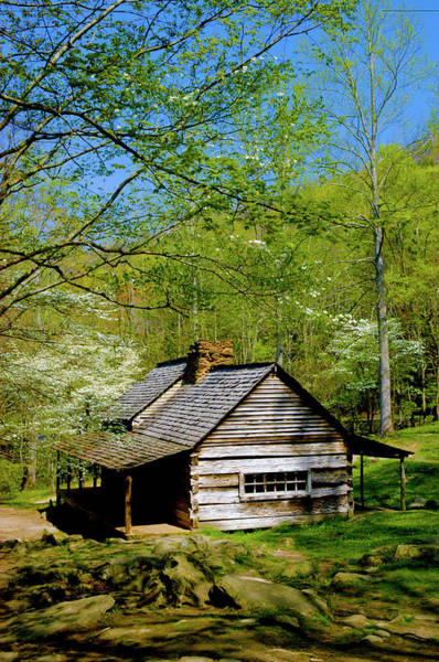Wall Art - Photograph - Country Cabin by Paul W Faust -  Impressions of Light