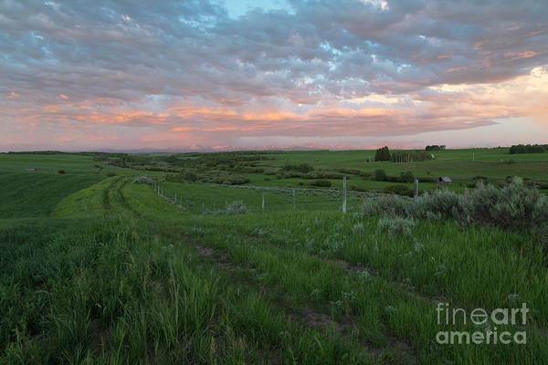 Wall Art - Photograph - Country Evening by Idaho Scenic Images Linda Lantzy