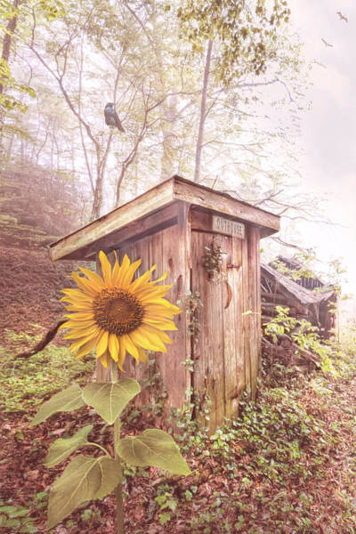 Wall Art - Photograph - Country Outhouse by Debra and Dave Vanderlaan