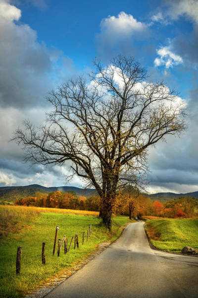 Photograph - Country Road Into Autumn by Debra and Dave Vanderlaan
