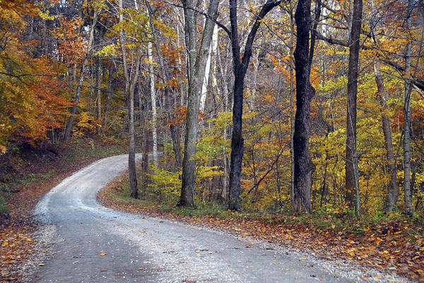 Photograph - Country Road On Fall Day by Mike Murdock