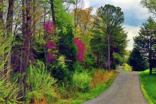 Photograph - Country Road Take Me Home by Ola Allen